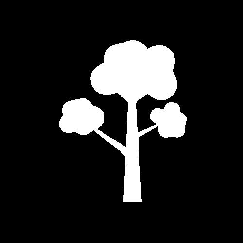 tree-without-base
